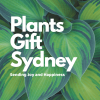 Plant Delivery Gifts Sydney