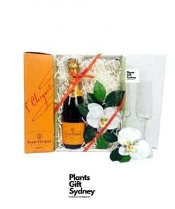 Celebrate In Style Veuve Clicquot Gift Box