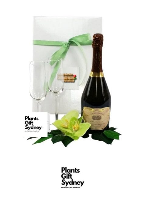 Order Online & Celebrate the Australian way with Grant Burge Pinot Noir Chardonnay