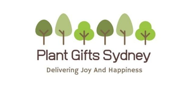 Plant Gifts Sydney